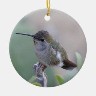Two Hummingbirds Round Ceramic Decoration