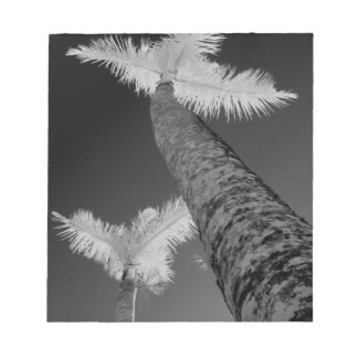 Two infrared palm trees. notepads