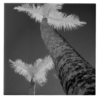 Two infrared palm trees. tile