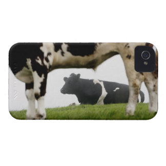 two iPhone 4 Case-Mate case