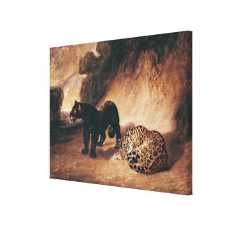 Two Jaguars from Peru Canvas Print
