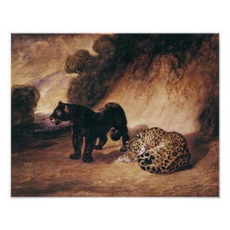 Two Jaguars from Peru Poster