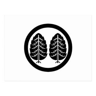 Two Japanese cedars in circle Postcard