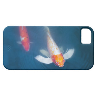Two Japanese koi fish in pond iPhone 5 Covers