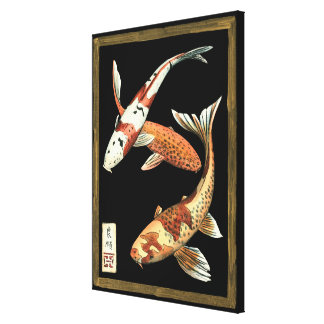 Two Japanese Koi Goldfish on Black Background Canvas Print