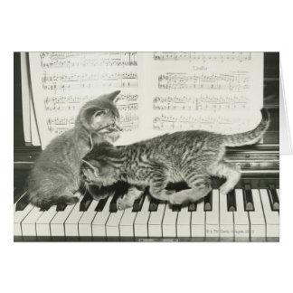 Two kitten playing on piano keyboard, (B&W) Card