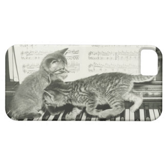 Two kitten playing on piano keyboard, (B&W) Case For The iPhone 5