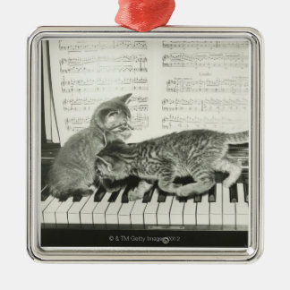 Two kitten playing on piano keyboard, (B&W) Silver-Colored Square Decoration