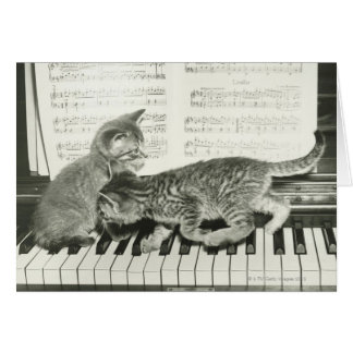 Two kitten playing on piano keyboard, (B&W) Greeting Card