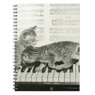Two kitten playing on piano keyboard, (B&W) Spiral Notebook