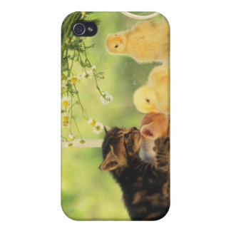Two Kittens and Two Chicks Playing, Front View, iPhone 4/4S Case
