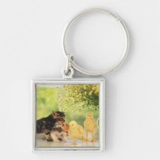 Two Kittens and Two Chicks Playing, Front View, Key Ring
