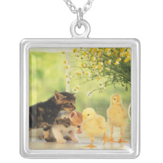 Two Kittens and Two Chicks Playing, Front View, Silver Plated Necklace