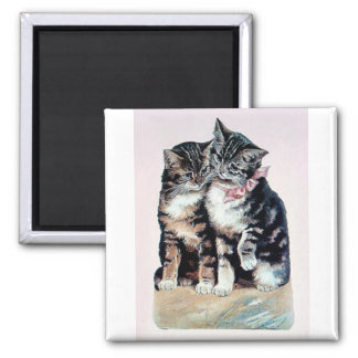 two kittens cats cute love adorable loving pets square magnet