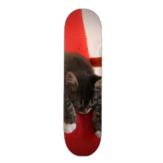 Two Kittens Hanging off a Red Chair Cushion Skateboards