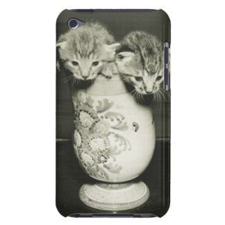 Two kittens hiding in vase, (B&W) iPod Touch Covers
