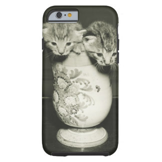 Two kittens hiding in vase, (B&W) Tough iPhone 6 Case
