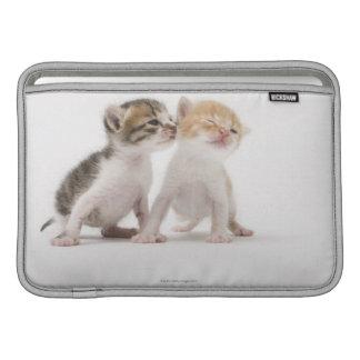 Two kittens kissing against white background MacBook sleeve