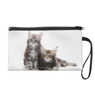 Two kittens of Maine coon cat Wristlet Purse