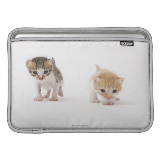 Two kittens on white background sleeve for MacBook air