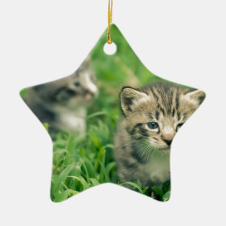 Two kittens playing in the grass ceramic star decoration