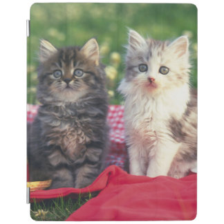 Two Kittens Sitting On A Red-Colored Blanket iPad Cover