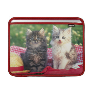 Two Kittens Sitting On A Red-Colored Blanket MacBook Sleeve