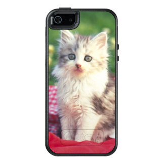 Two Kittens Sitting On A Red-Colored Blanket OtterBox iPhone 5/5s/SE Case