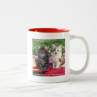 Two Kittens Sitting On A Red-Colored Blanket Two-Tone Coffee Mug