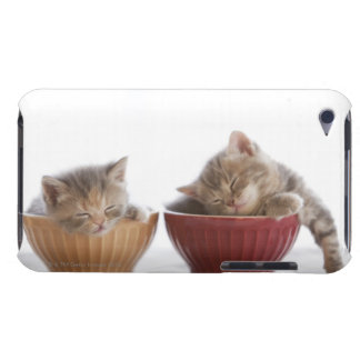 Two Kittens Sleeping in Bowls iPod Touch Covers