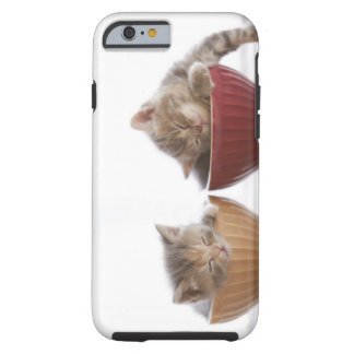 Two Kittens Sleeping in Bowls Tough iPhone 6 Case