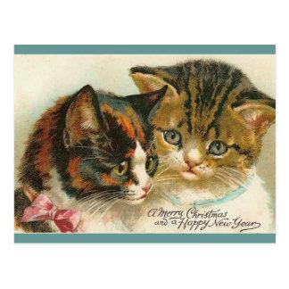 Two Kitties Christmas Post Cards