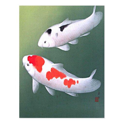 Two Koi, Japanese Woodblock Print Post Card