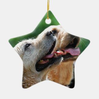 Two Labradors Ceramic Star Decoration