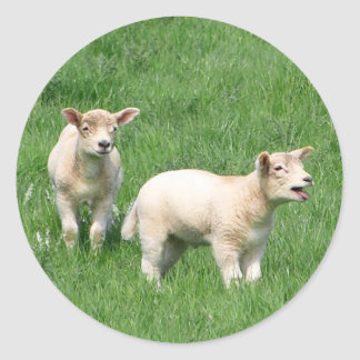 Two Lambs Classic Round Sticker