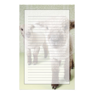 Two Lambs Indoors with Floral Wallpaper Stationery