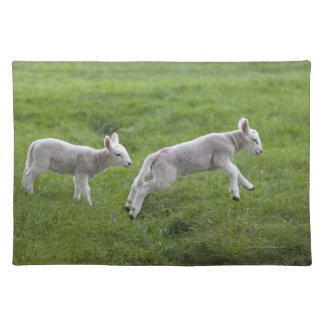 Two Lambs Placemat