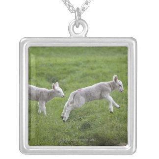 Two Lambs Silver Plated Necklace