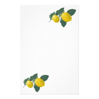 Two lemons on a branch. Oil painting. Stationery