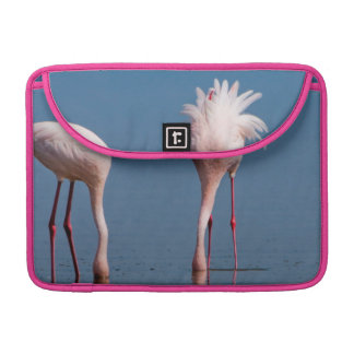 Two Lesser Flamingos (Phoenicopterus Minor) Feed Sleeve For MacBooks