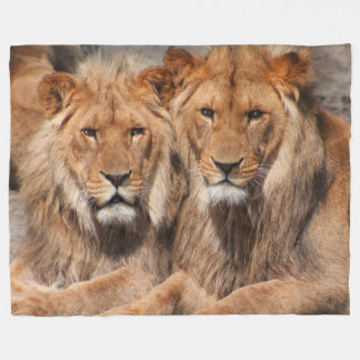 Two Lions Blanket