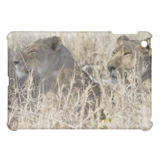 Two lions hidden in dry grass, Kruger National iPad Mini Cases