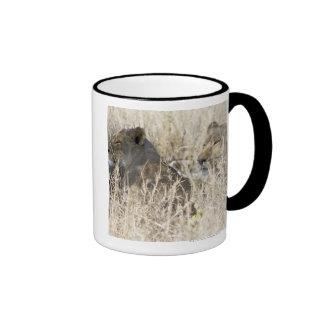 Two lions hidden in dry grass, Kruger National Ringer Mug