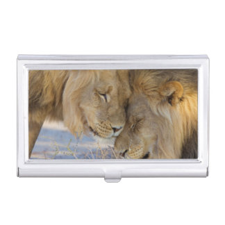 Two Lions rubbing each other Business Card Holder