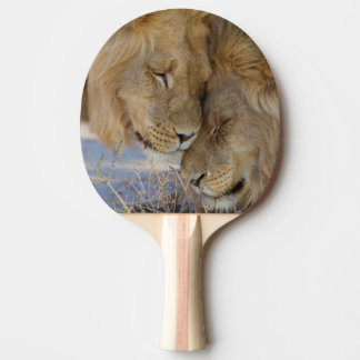 Two Lions rubbing each other Ping Pong Paddle