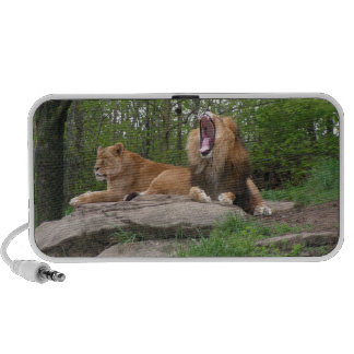 Two Lions Speakers