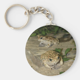 Two little toads - green frog print basic round button key ring