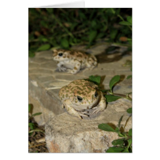 Two little toads - green frog print greeting card