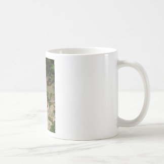 Two little toads - green frog print coffee mug