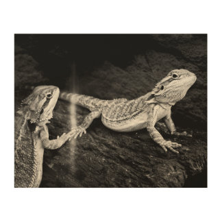 Two Lizards Wood Wall Decor